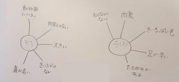 〇×ブログ用.JPG