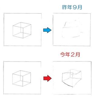 立方体効果.jpg